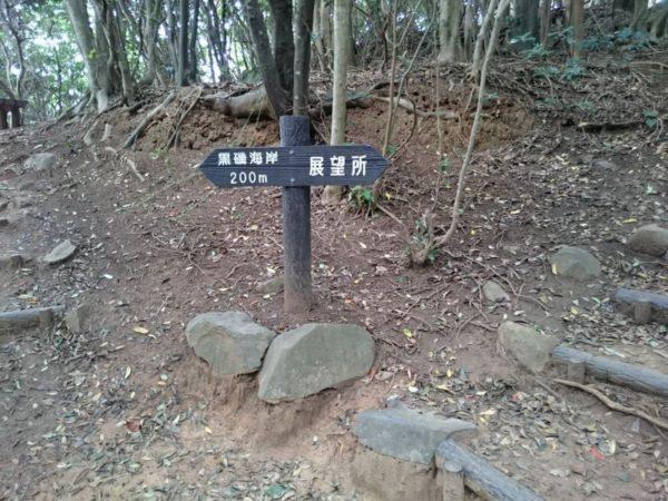 トトロの道2