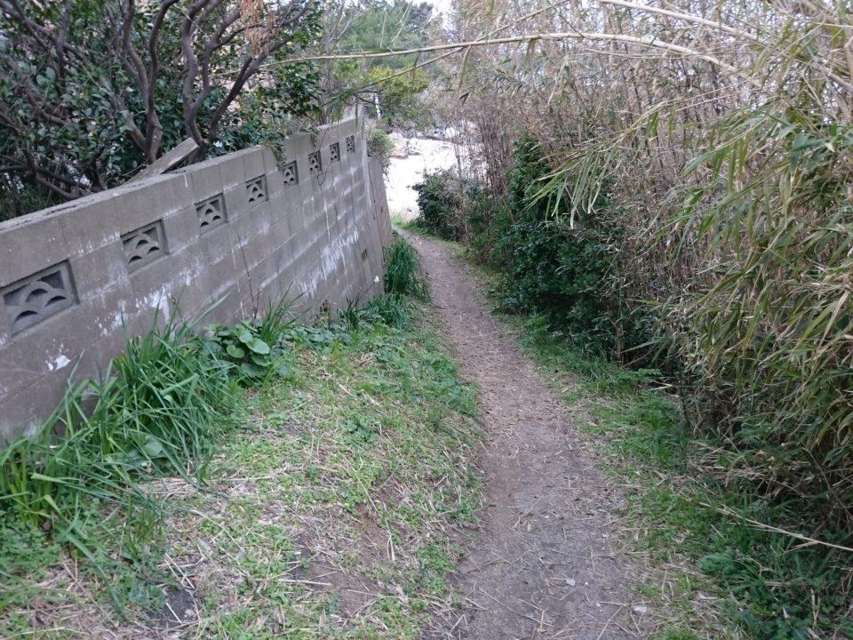 箱島神社へ続く道