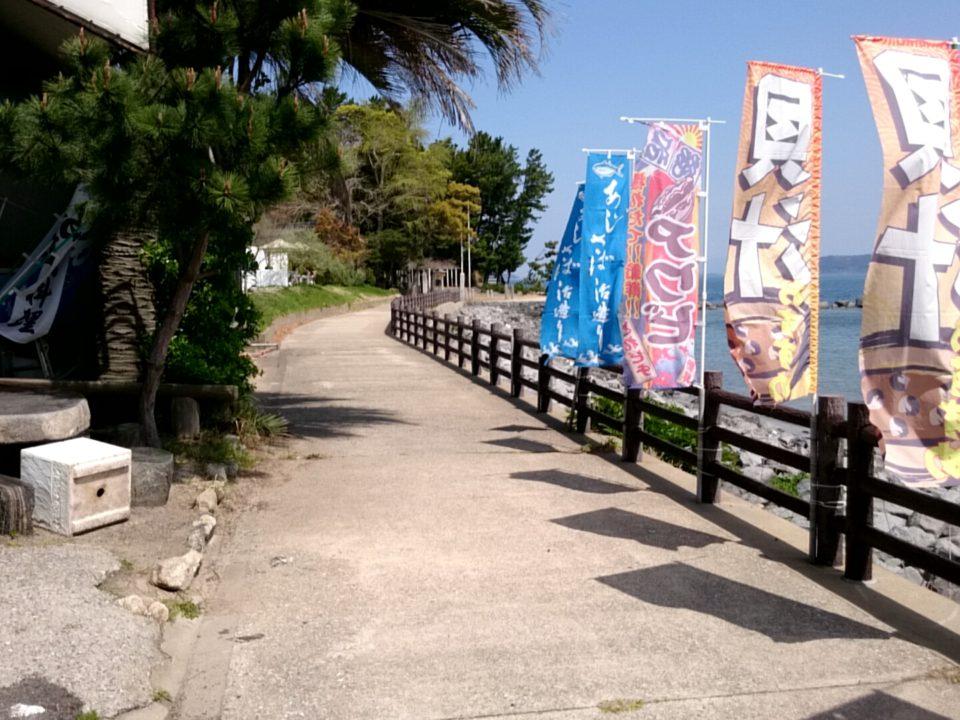 魚庄の前の道