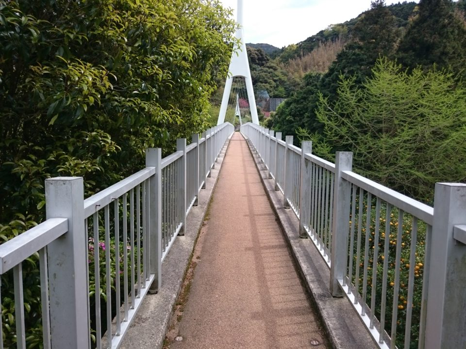 ゆらりんこ橋1