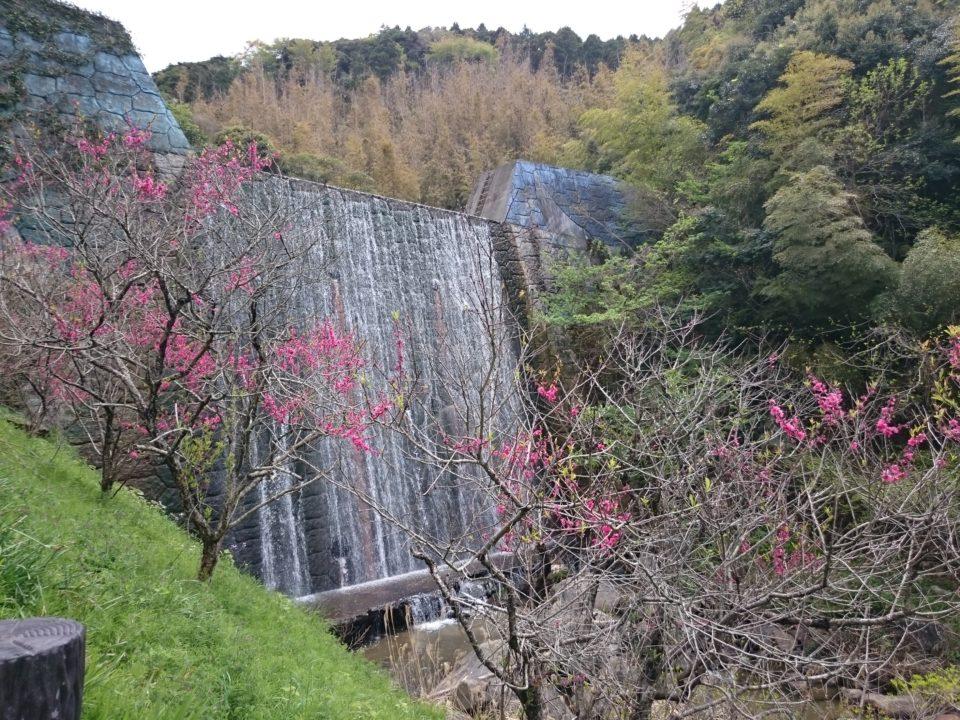 ゆらりんこ橋 滝