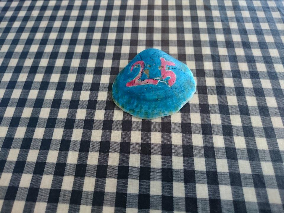 ナッティドレッド 貝殻