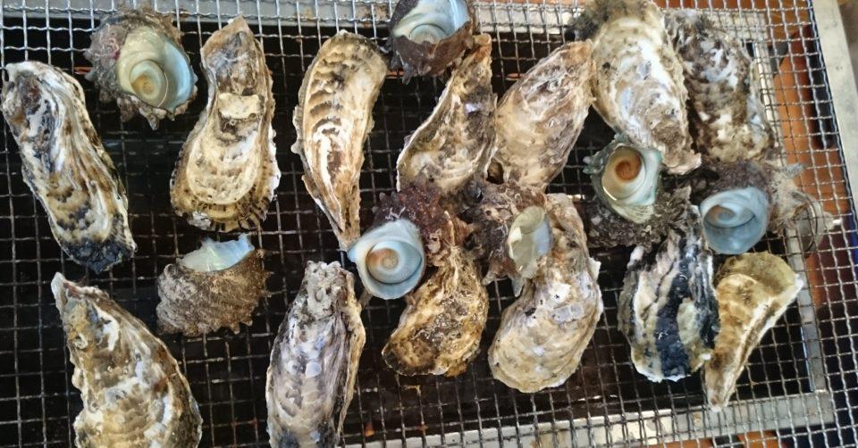 豊漁丸 牡蠣 さざえ