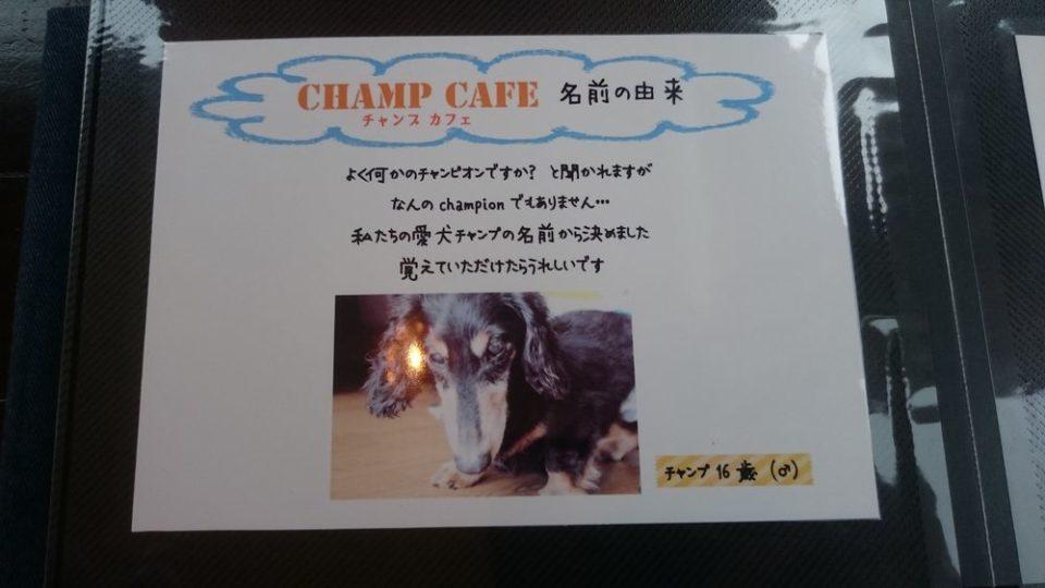 チャンプカフェ糸島 チャンプくん