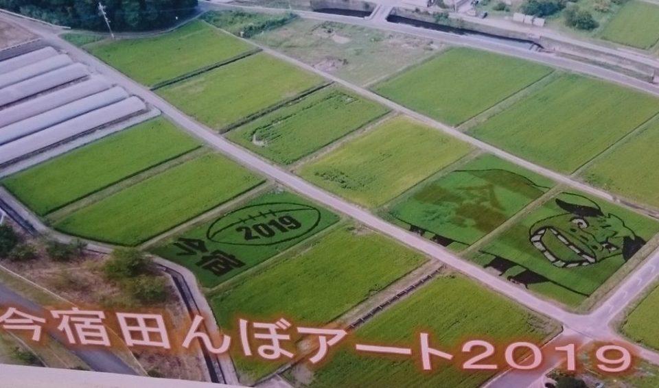 今宿田んぼアートフェスタ 2019詳細