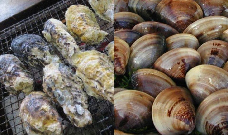 加布里漁港 牡蠣小屋 牡蠣とはまぐり