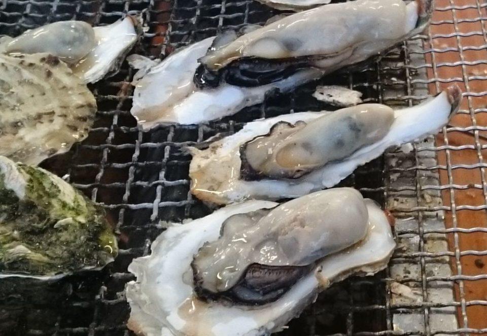 福吉 牡蠣小屋イメージ