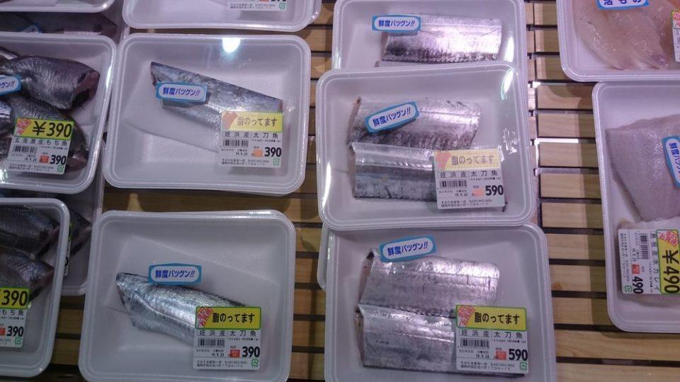 オレンジ市場 姪浜産太刀魚