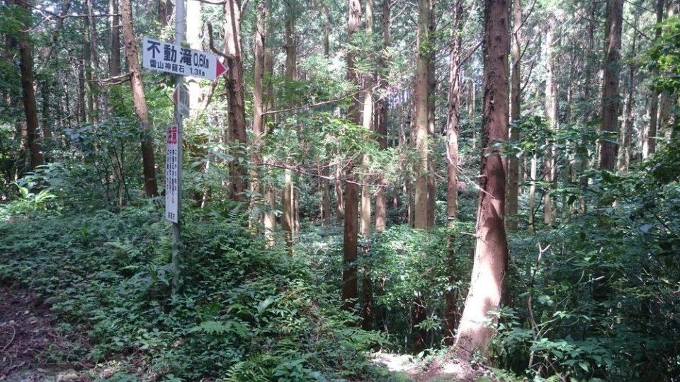 不動滝まで0.6kmの分岐
