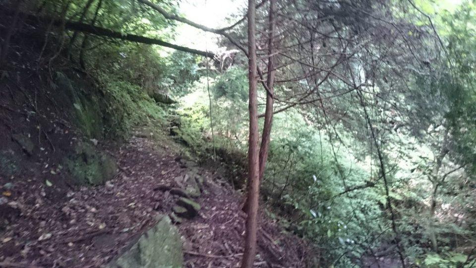 不動滝までの坂道