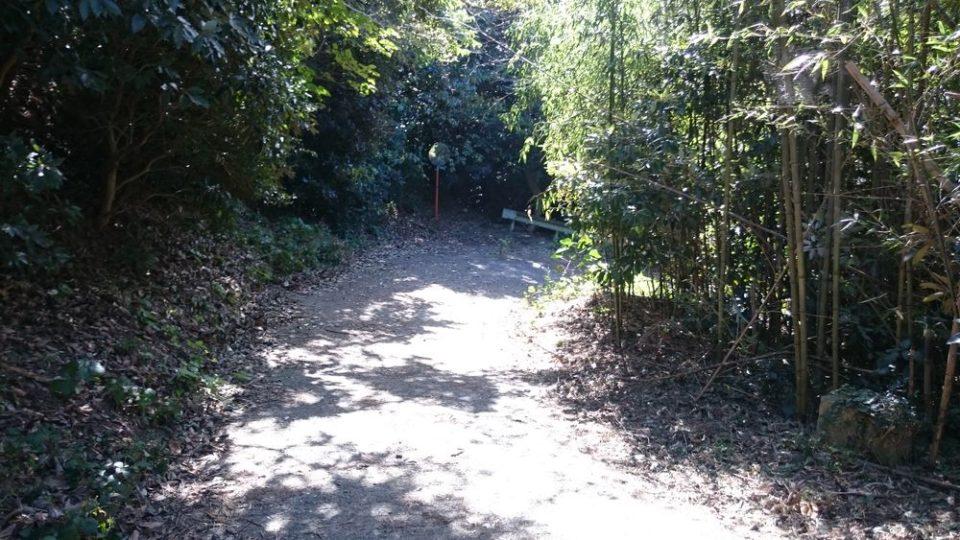 火山 遊歩道2