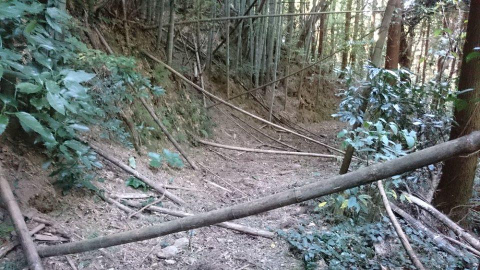 火山 遊歩道通れない
