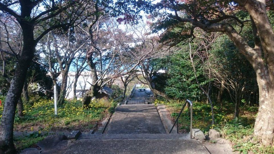 鎮懐石八幡宮 帰りの階段