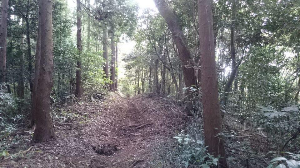 糸島 宇美八幡宮 上宮への道