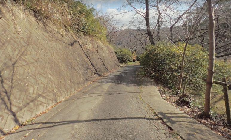 加布里公園まで続く道