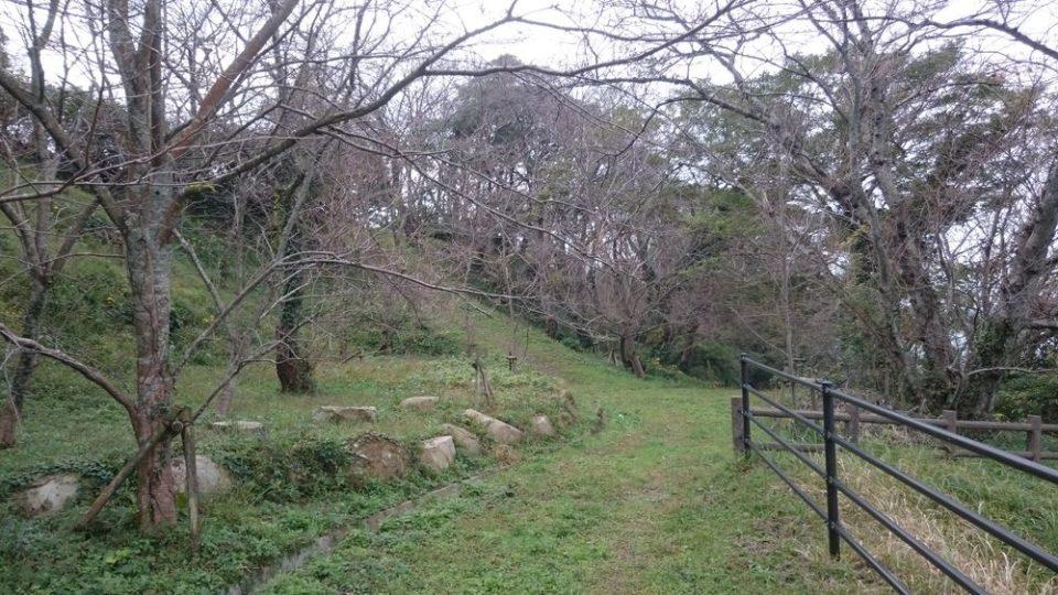 加布里公園内の景色