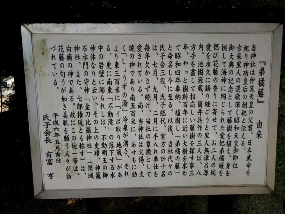雉琴神社 弟橘藤の由来