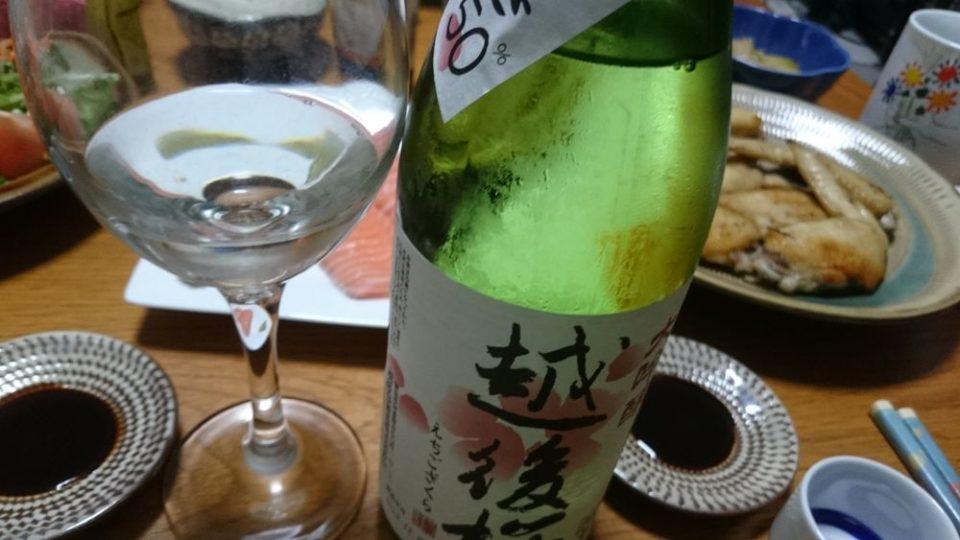 大吟醸 越後桜 ワイングラスで