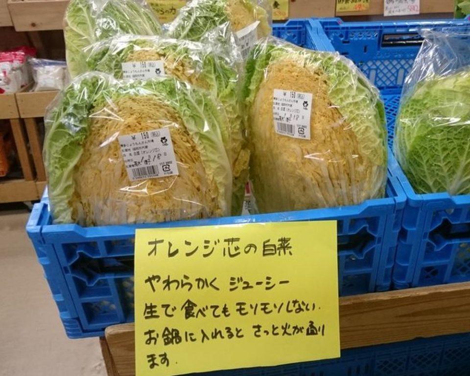 博多じょうもんさん 福重市場 オレンジ芯白菜