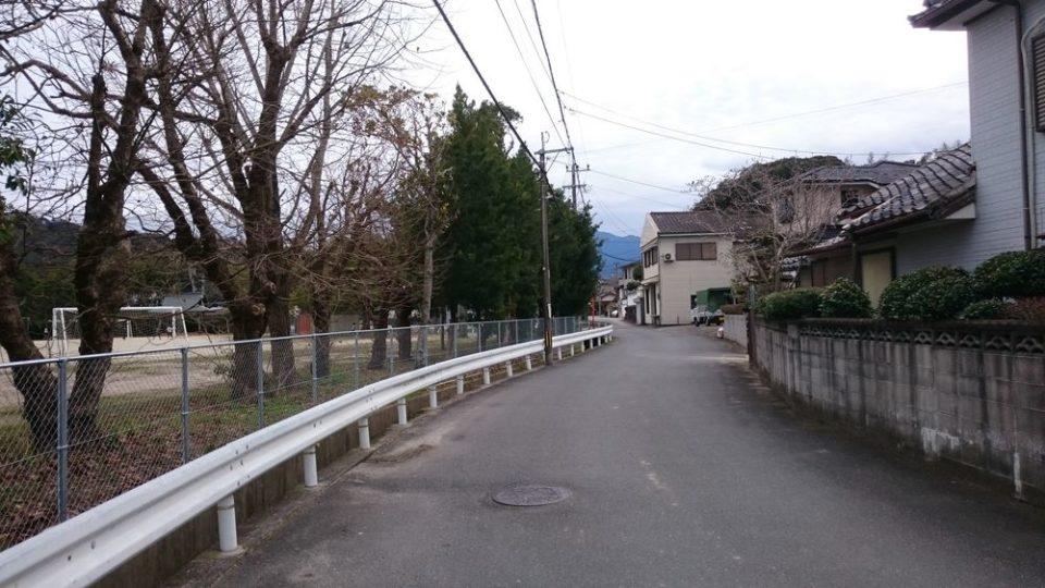 糸島の恵Moomo(モーモ)前の道