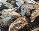 糸島の牡蠣小屋 人気14店(その2)岐志漁港・唐泊漁港・加布里漁港・福吉漁港